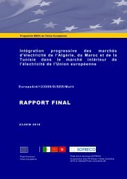 Rapport final du projet - Ministère de l'énergie et des mines