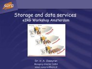 Grid applications and e-Science support in The Netherlands