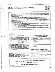 shop Порядок изменения срока уплаты налога и сбора, а также пени и штрафа налоговыми органами
