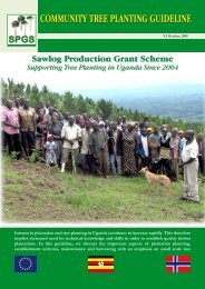 COMMUNITY TREE PLANTING GUIDELINE - SPGS