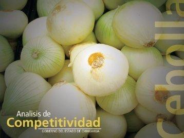 cebolla - Gobierno del Estado de Chihuahua