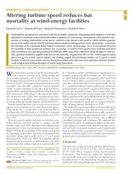 Download here - Bats and Wind Energy Cooperative