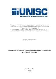programa de pós-graduação em desenvolvimento regional - UNISC ...