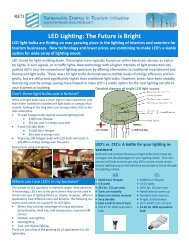 LED LighƟng: The Future is Bright - Green Plus