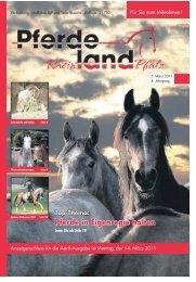 Pferde in Eigenregie halten