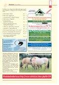 Pferde in Eigenregie halten - Seite 5