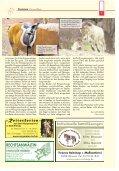 Pferde in Eigenregie halten - Seite 7