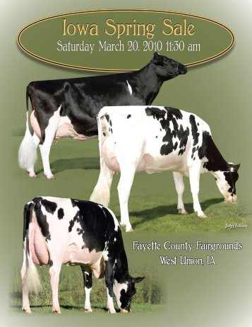 Iowa Spring Sale ~ 2010 - Holstein World Online