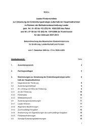 Leader Förderrichtlinie zur Umsetzung der Entwicklungsstrategie ...
