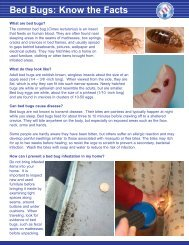 Bed Bugs: Know the Facts - Fairfield Department of Health
