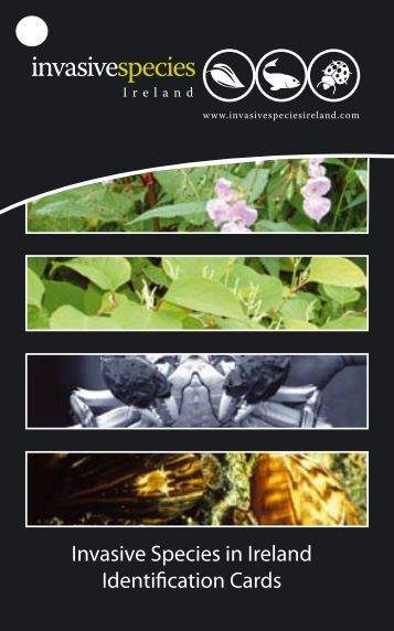Invasive Species in Ireland Identification Cards