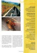 VINO & KRUH - Hiking & Biking - Page 7