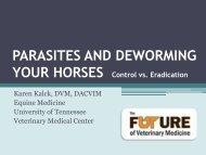 DEWORMING IN HORSES - The University of Tennessee College of ...