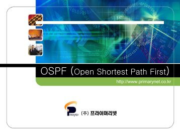 OSPF (Open Shortest Path First) Protocol