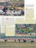 Viele Länder des östlichen Afrika sind heute touristisch gut erschlos ... - Page 3
