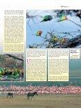 Viele Länder des östlichen Afrika sind heute touristisch gut erschlos ... - Page 4