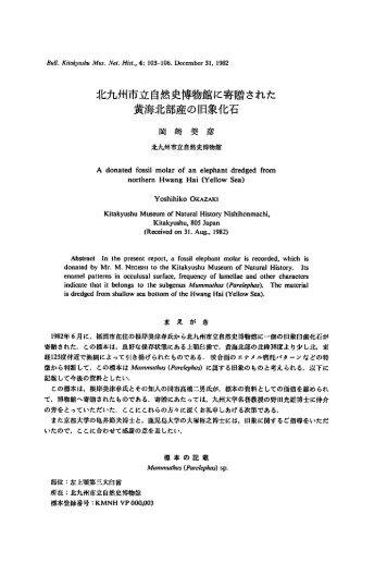 708KB - 北九州市立 いのちのたび博物館【自然史・歴史博物館】