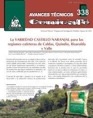 La VARIEDAD CASTILLO NARANJAL para las regiones cafeteras ...