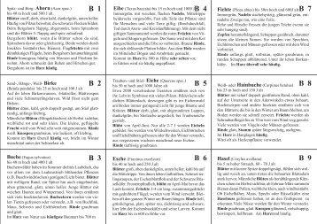 B 6 B 5 B 2 B 3 B 4 B 1 B 8 B 9 B 7 - fellwock-schulze.de
