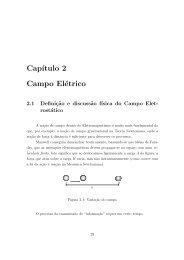 Cap´ıtulo 2 Campo Elétrico