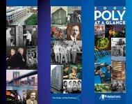 Download PDF - Polytechnic University