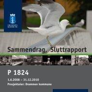 P 1824 Sammendrag, Sluttrapport - Drammen kommune