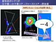 磁気乱流分子雲コアにおける原始星と原始惑星系円盤の形成 - CfCA