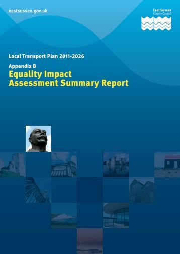 Equality Impact Assessment Summary Report