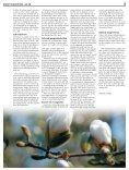 Skovshoved Avis nr. 100 - Skovshoved Kirke - Page 3