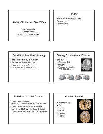 Biological and psychological basis of learning and memory - Research Paper Example