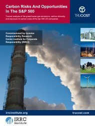 Carbon Risks and Opportunities in the S&P 500 - Investor ...
