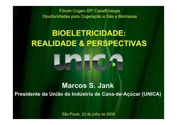 BIOELETRICIDADE: REALIDADE & PERSPECTIVAS - Cogen
