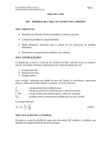 Pérdidas de Carga en Conductos a Presión - Universidad del Cauca