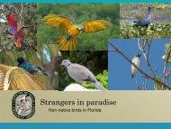 Non-native birds
