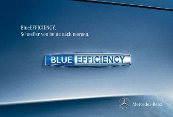 BlueEFFICIENCY Broschüre zum Download