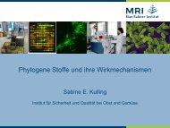 Präsentation Kulling (pdf | 1906,04 KB) - H. Wilhelm Schaumann ...
