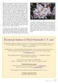 Utgave nr 1 - Den norske Rhododendronforening - Page 5
