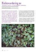 Utgave nr 1 - Den norske Rhododendronforening - Page 6