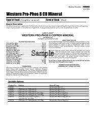 Western Pro-Phos 8 CU Mineral - Beeflinks