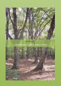 Rapporto stato foreste al 31 dicembre 2011 - Ersaf - Page 7