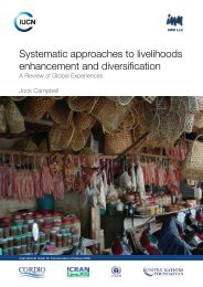 Systematic approaches to livelihoods enhancement and diversification