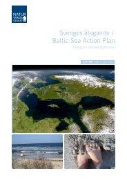 Sveriges åtaganden i Baltic Sea Action Plan - Vattenmyndigheterna