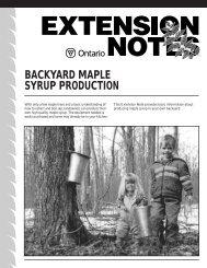 Backyard Maple Syrup Production - LandOwner Resource Centre
