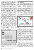 Plný text v PDF - Linkos - Page 4