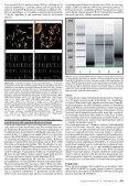 Plný text v PDF - Linkos - Page 5