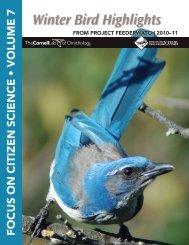 2011 Winter Bird Highlights - Cornell Lab of Ornithology