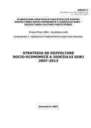 Strategia de dezvoltare socio-economică a județului Gorj