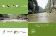ambiental de un proyecto hidroeléctrico en el Río Usumacinta
