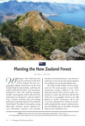 Planting the New Zealand Forest - The Arboretum Foundation