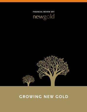 Annual Financial Report 2011 - New Gold